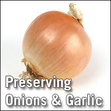 Preserving Onions and Garlic