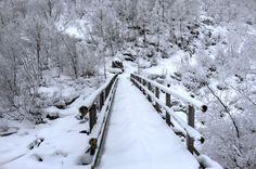 Bridge covered with snow in Bad Gastein, Salzburg, Austria #bridge #winter #Austria #photo #photograph