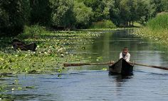 Danube Delta, Romania ---> 129 Places Worth Visiting Once in a Lifetime (part. Places Around The World, Travel Around The World, Places To Travel, Places To See, Tourist Places, Danube River Cruise, Danube Delta, Places Worth Visiting, Famous Places