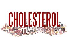 Cholesterol: Everything You Should Know | Kyor Blog