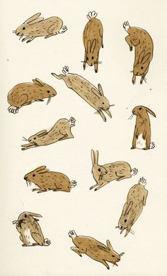 Briony May Smith rabbit illustration Gravure Illustration, Children's Book Illustration, Building Illustration, Lapin Art, Bunny Art, Art Drawings, Character Design, Artsy, Sketches