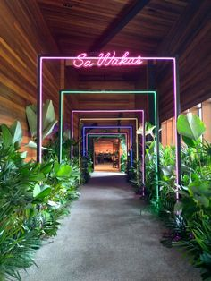 Your from the demands lights! Lead your guests with these tunnels built out of frames and neon lights. Tropical + disco, not a bad combination 🕺🌴🍹 Cafe Design, Store Design, Nightclub Design, Deco Restaurant, Restaurant Interior Design, Booth Design, Neon Lighting, Retail Design, Event Decor