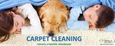Carpet Cleaning Tips Awesome carpet cleaning business home.Professional Carpet Cleaning Tips. Carpet Cleaning Recipes, Carpet Cleaning Equipment, Commercial Carpet Cleaning, Dry Carpet Cleaning, Carpet Cleaning Business, Carpet Cleaning Machines, Diy Carpet Cleaner, Professional Carpet Cleaning, Carpet Cleaning Company