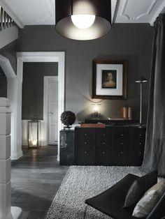 couleur gris perle, commode noire, tapis rectangulaire, portrait suspendu