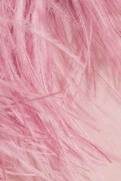 Pastel-pink crinkled silk-chiffon and feathers  Slips on 100% silk; trim: 100% feathers (Turkey, Ostrich) Specialist clean Feathers: South Africa Made in Italy