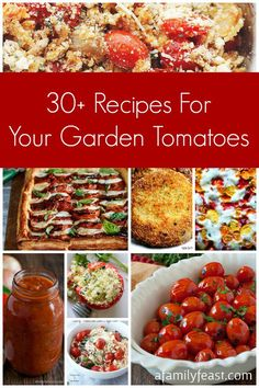 30-plus Recipes For Your Garden Tomatoes from some of the best bloggers around. Sauces, salsas, soups, entrees and sides. Even recipes for green tomatoes!