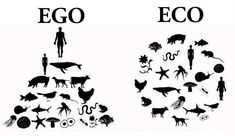 This image begs the question; do you have a EGO or ECO view of life on this planet?  Image: © Jeff Corwin  http://www.facebook.com/jeffcorwinconnect