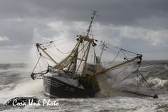 Shipwreck of Belgium cutter in front of Dutch coast Last night (16 October 2013) a Belgium fishing boat ( a cutter) got in problems because one of the fishing nets had come in the screw. The ship was adrift and stranded near the 'Hondsbossche Zeewering' at Petten in the Netherlands. Some holes in the boat made it impossible for the crew and captain to stay aboard. (the engine room was filled with water and one of the petrol tanks is leaking)
