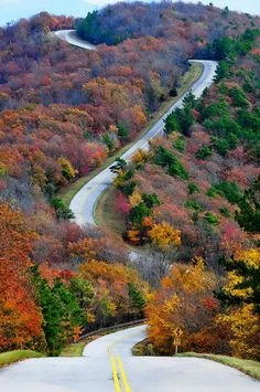 Talamena scenic drive arkansas fall colors