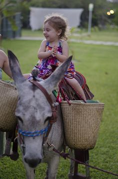 donkey riding. or a state fair with donkey-riding for kids :)