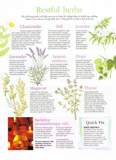 Natural Remedies For Sleep Restful herbs.also, a sedative aromatherapy oil recipe. For ones who don't want the herbs~ Herbal Remedies, Home Remedies, Natural Remedies, Health Remedies, Sleep Remedies, Healing Herbs, Medicinal Plants, Be Natural, Natural Healing