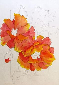 The Painted Prism: WATERCOLOR WORKSHOP: Painting Red Poppies GO FOR IT!!