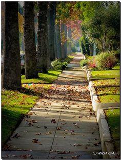 Beautiful shot of Pasadena