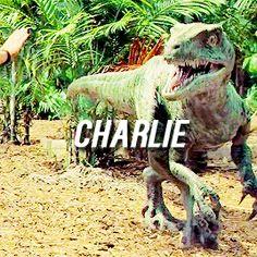 Charlie [gif]
