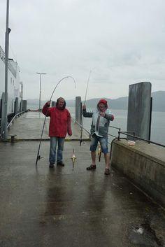 Pêche au ferry à Kanestrum ,Halsa