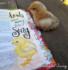 Matthieu 2 bible journaling- birds don't worry, they sing