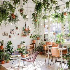 This is really fun.  I could do a variation of this with shade plants  hanging from the rafters of my covered porch.
