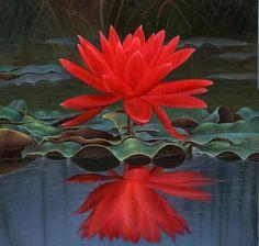 La belleza es el primer regalo que dá la naturaleza a la mujer, y el primero que le quita.
