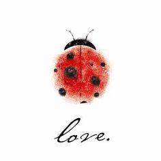 Ladybug tatoo line drawing Lady Bug Tattoo, Love Tattoos, Body Art Tattoos, Tatoos, Thumb Print Tattoos, Love Bugs, Miraculous Ladybug, Beetles, Watercolor Paintings