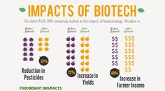 PloS ONE recently published the largest review yet conducted of the crops' effects on farming. It concludes that these have been overwhelmingly positive! IFIC takes a close look at this study and shows the impacts of biotech - via IFIC Foundation