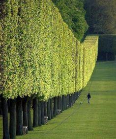 Parc de Sceaux | Read More Info