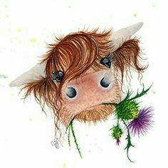 Highland coo with Scottish thistle Highland coo with Scottish thistle The post Highland coo with Scottish thistle appeared first on Best Pins for Yours - Drawing Ideas Animal Paintings, Animal Drawings, Art Drawings, Cow Drawing, Painting & Drawing, Drawing Ideas, Baby Drawing, Farm Animals, Cute Animals