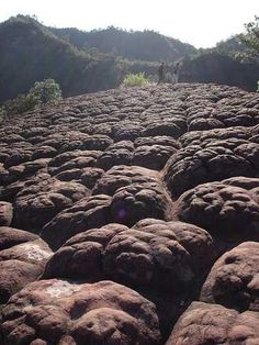 At the peak of 1,000 Turtle Mount, the sandstone rock formations look like turtle shells.
