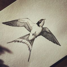 A swallow in ink, this one only using dots for the shading. Think it's called stipling.