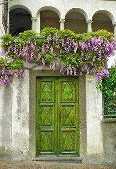 Green front door with overhanging Wisteria