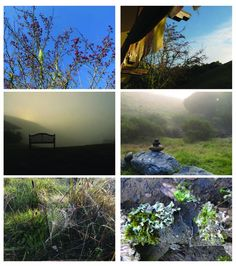 Spirit Rock | Marin County | Heaven!