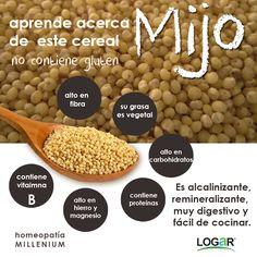 El #Mijo: aprende algunos beneficios de este #cereal