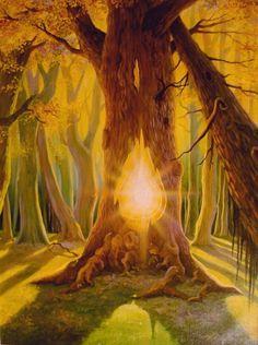 Light of The Tree © Hans Georg Leiendecker