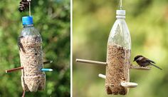 DIY recycling are at all times cool and doing your part to make an environment clean just like these awesome and creative ways to reuse old plastic bottles Easy Plastic Bottle Crafts, Water Bottle Crafts, Use Of Plastic, Plastic Milk, Reuse Plastic Bottles, Plastic Spoons, Recycled Bottles, Make A Bird Feeder, Bird Feeders