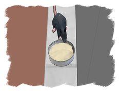 How to Make Rat Poison -- via wikiHow.com