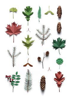 Paper leaves collections by Fideli Sundquist