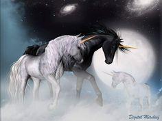 Fantasy Gallery - Artsy Dreamer Digital Art by Patrish Dehler Unicorn Fantasy, Fantasy Dragon, Fantasy Art, Majestic Unicorn, Beautiful Unicorn, Unicorn Books, Unicorn Art, Cute Fantasy Creatures, Magical Creatures