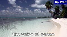 Dj. Wolf: the voice of ocean