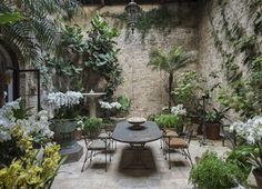 London designer Rose Uniacke transformed an unloved gallery in her 19th-century mansion into a light-filled indoor conservatory where exotic orchids bloom.