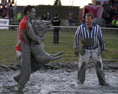 Pig wrestling | jp.reuters.com