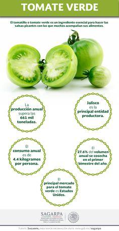 El tomatillo o tomate verde es un ingrediente esencial para hacer las salsas picantes con las que muchos acompañan sus alimentos. SAGARPA SAGARPAMX  #SomosProductores