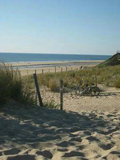 Biscarrosse #dune #plagesud #sable