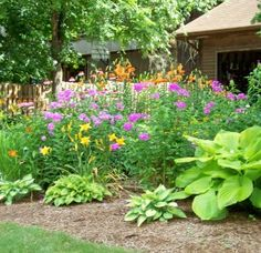 hosta modern garden ideas