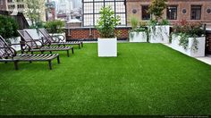 astroturf rooftop - Google Search