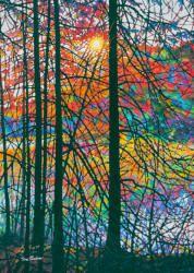 Tim Packer - Northern Marsh