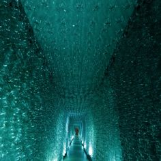 """Giant tunnel made of PET bottles for them Minas Trend Preview event - """"Água""""."""