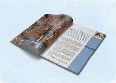 Création de brochure sur le bilan carbone | Com On Light, agence conseil en communication responsable