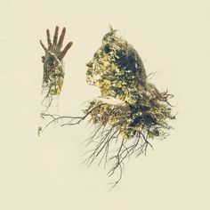 With The Help Of Yoga Instructors, I Create Surreal Photos That Blend Human Body With Plant Forms | Bored Panda