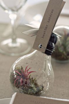 Brilliant idea!  ruffledblog.com/vintage-botanical-wedding-ideas-with-lightbulb-terrariums-moss-and-kraft-paper/#