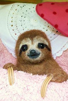 Three toed Sloth Baby by helenpriem, via Flickr