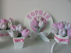 Kit de tulipas
